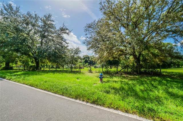 3282 Yothers Road, Apopka, FL 32712 (MLS #O5898266) :: Carmena and Associates Realty Group