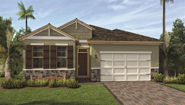 3613 Blue Sage Loop, Clermont, FL 34711 (MLS #O5898875) :: Frankenstein Home Team