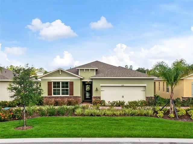 17857 Blazing Star Circle, Clermont, FL 34711 (MLS #O5898900) :: Frankenstein Home Team