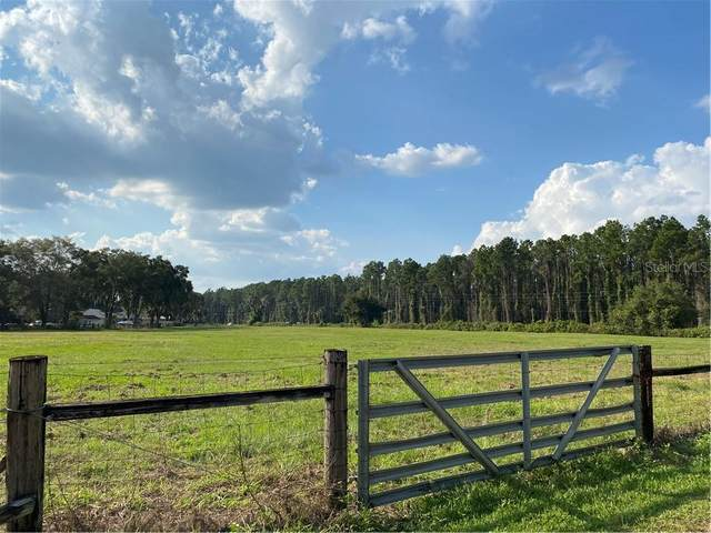 N Country Road, Eustis, FL 32726 (MLS #O5899435) :: Griffin Group