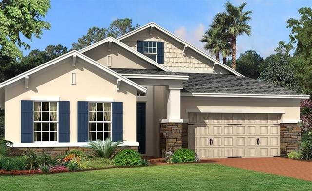 2073 Panoramic Circle, Apopka, FL 32703 (MLS #O5899610) :: Cartwright Realty
