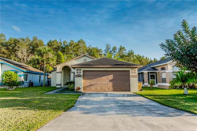 3052 Stillwater Drive, Kissimmee, FL 34743 (MLS #O5900052) :: Frankenstein Home Team