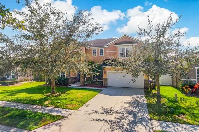 351 Michigan Estates Circle, Saint Cloud, FL 34769 (MLS #O5900128) :: Pepine Realty