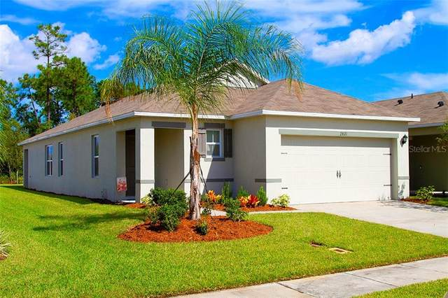 2821 Taton Trace, New Smyrna Beach, FL 32168 (MLS #O5900726) :: Frankenstein Home Team