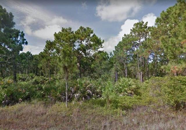 952 Elgin Street, Lehigh Acres, FL 33974 (MLS #O5900847) :: Pepine Realty