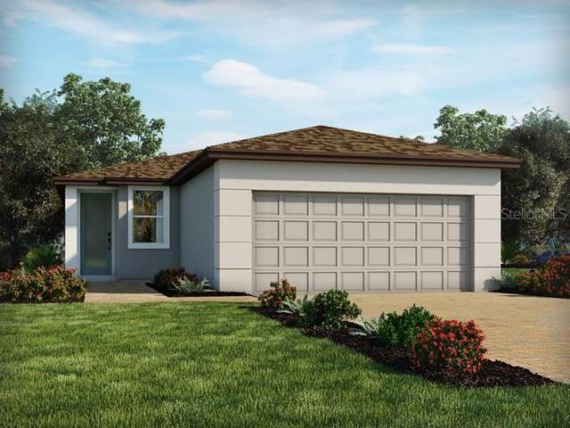 29755 Anahid Drive, Leesburg, FL 34748 (MLS #O5900943) :: Frankenstein Home Team