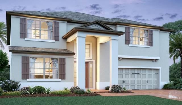 13185 Blossom Valley Drive, Clermont, FL 34711 (MLS #O5901156) :: Delgado Home Team at Keller Williams