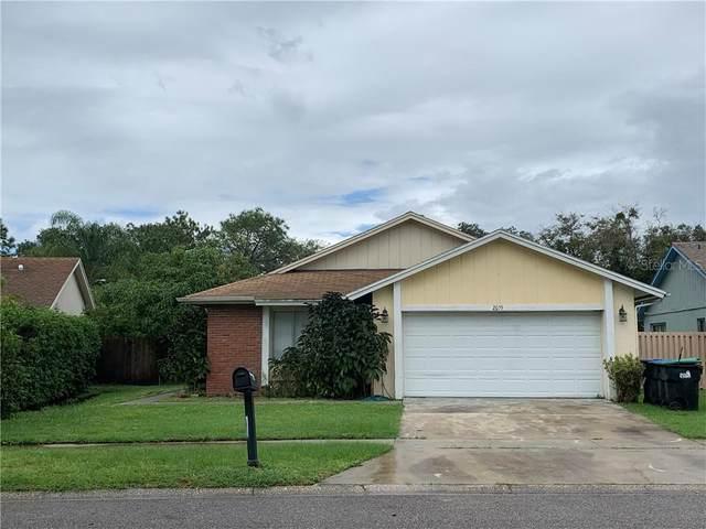 2055 Basil Drive, Orlando, FL 32837 (MLS #O5901178) :: Sarasota Property Group at NextHome Excellence
