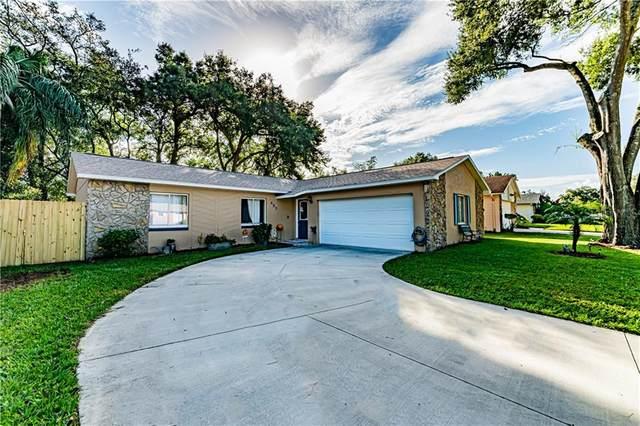 407 Springview Drive, Sanford, FL 32773 (MLS #O5901244) :: Alpha Equity Team