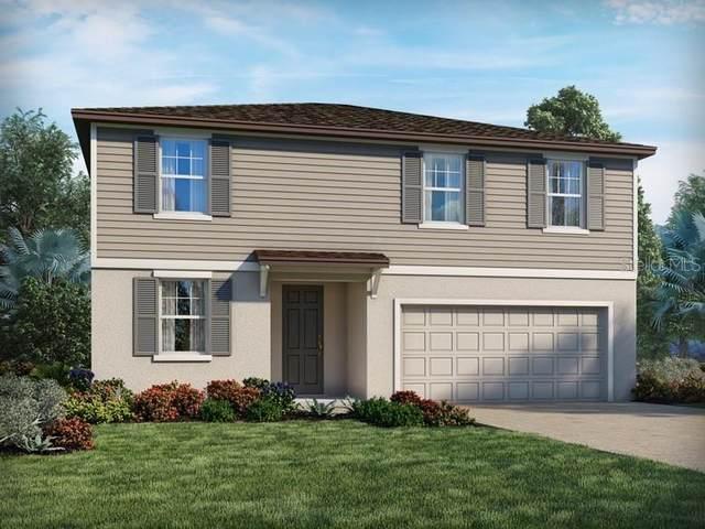 597 Vista Villages Boulevard, Davenport, FL 33896 (MLS #O5901399) :: Bridge Realty Group