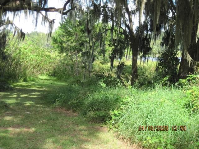 Lakeview Street, Umatilla, FL 32784 (MLS #O5901648) :: Baird Realty Group