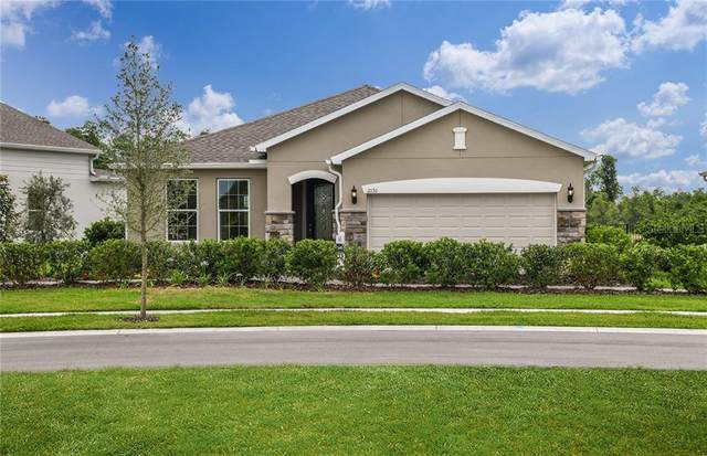 2131 Bur Oak Boulevard, Saint Cloud, FL 34771 (MLS #O5901872) :: Griffin Group