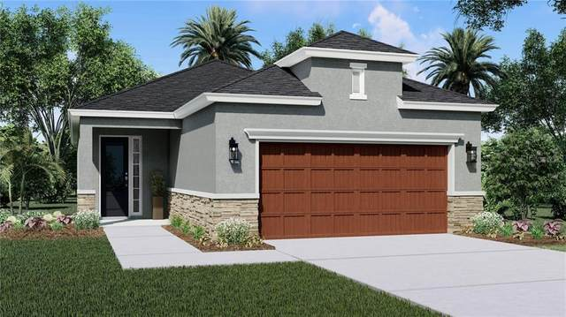4308 Reisswood Loop, Palmetto, FL 34221 (MLS #O5901908) :: Realty Executives Mid Florida