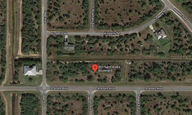 851 St Andre Boulevard SW, Palm Bay, FL 32908 (MLS #O5901914) :: Young Real Estate