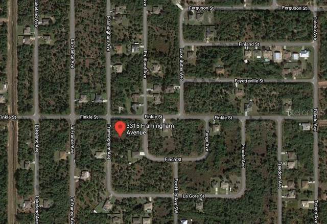 3315 Framingham Avenue SW, Palm Bay, FL 32908 (MLS #O5901917) :: Young Real Estate