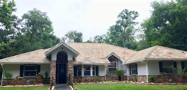 1050 Panther Street, Oviedo, FL 32765 (MLS #O5902012) :: Premier Home Experts