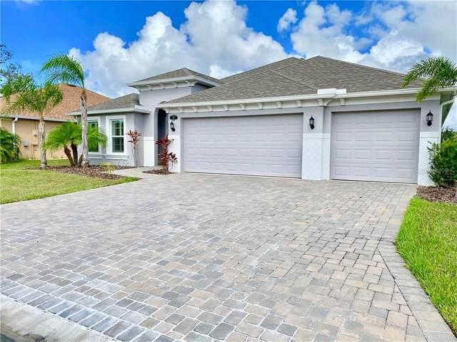 305 Panacea Way, Titusville, FL 32780 (MLS #O5902250) :: Cartwright Realty