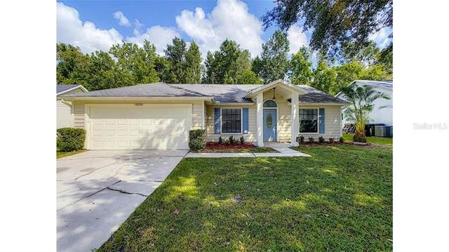 10209 Winding Creek Lane, Orlando, FL 32825 (MLS #O5902306) :: Cartwright Realty