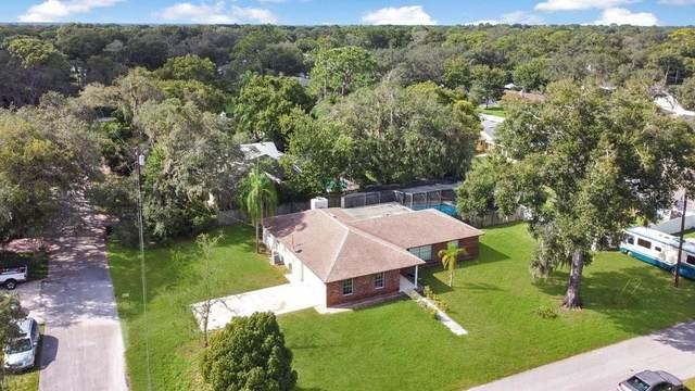 340 Beach Avenue, Longwood, FL 32750 (MLS #O5902508) :: Young Real Estate
