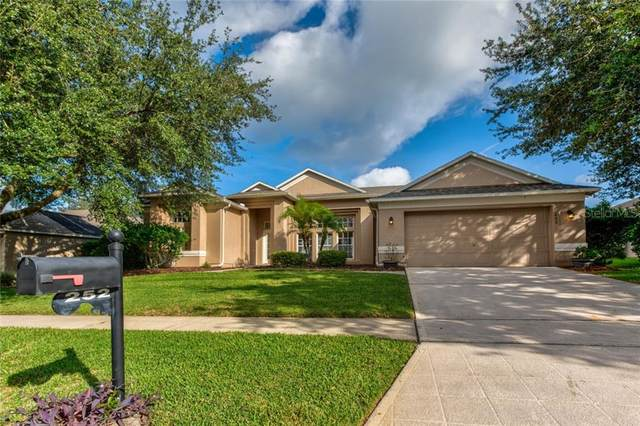 252 Lake Darby Place, Gotha, FL 34734 (MLS #O5902565) :: Gate Arty & the Group - Keller Williams Realty Smart