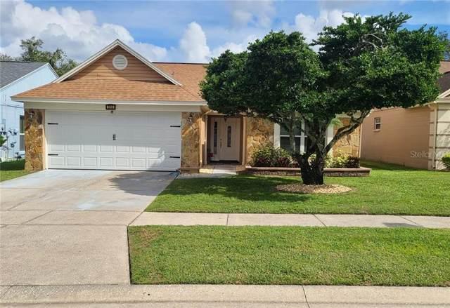 313 Mantis Loop, Apopka, FL 32703 (MLS #O5902812) :: Bustamante Real Estate
