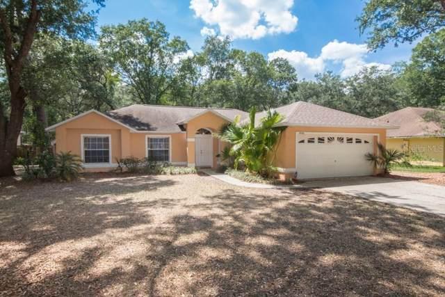 4416 White Oak Circle, Kissimmee, FL 34746 (MLS #O5902941) :: Gate Arty & the Group - Keller Williams Realty Smart