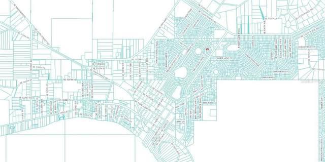 Magnolia Pass, Ocala, FL 34473 (MLS #O5903042) :: U.S. INVEST INTERNATIONAL LLC