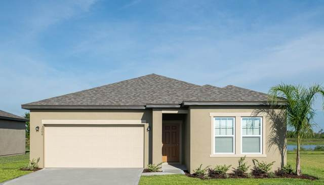 2857 Neverland Drive, New Smyrna Beach, FL 32168 (MLS #O5903108) :: Bridge Realty Group