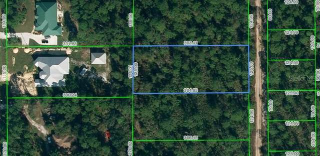 6275 Dian Avenue, Sebring, FL 33875 (MLS #O5903240) :: The Lersch Group