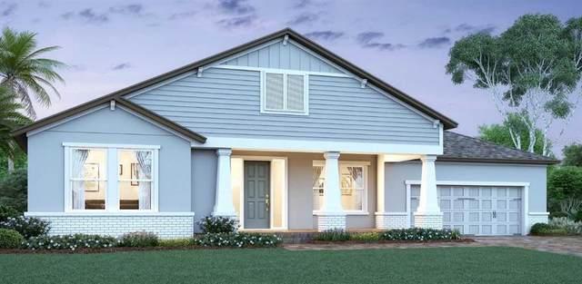1088 Hull Island Drive, Oakland, FL 34787 (MLS #O5903565) :: Burwell Real Estate