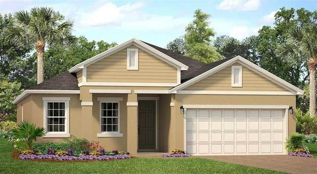 1081 Hendon Loop, Davenport, FL 33837 (MLS #O5903819) :: The Figueroa Team