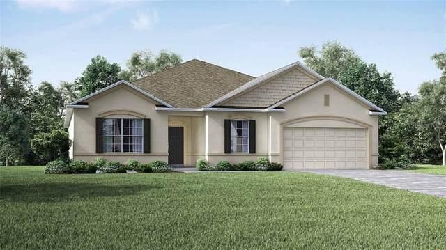 464 San Ambrosio Street, Punta Gorda, FL 33983 (MLS #O5904329) :: Burwell Real Estate