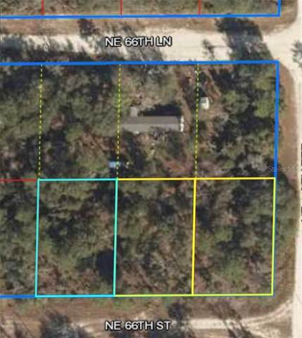 NE 66 Street, Williston, FL 32696 (MLS #O5905116) :: Young Real Estate