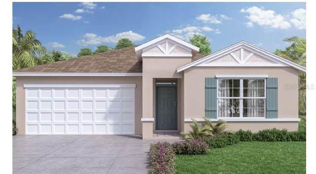 422 Jacks Way, Davenport, FL 33837 (MLS #O5905219) :: Pepine Realty