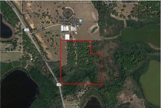 County Road 450, Umatilla, FL 32784 (MLS #O5905255) :: Griffin Group