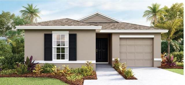 605 Bernard Lane, Davenport, FL 33837 (MLS #O5905470) :: Alpha Equity Team