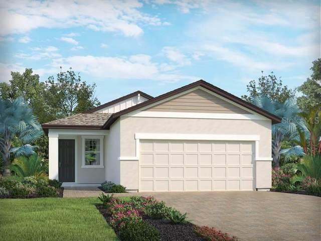 3134 Crab Trap Drive, New Smyrna Beach, FL 32168 (MLS #O5905692) :: Burwell Real Estate