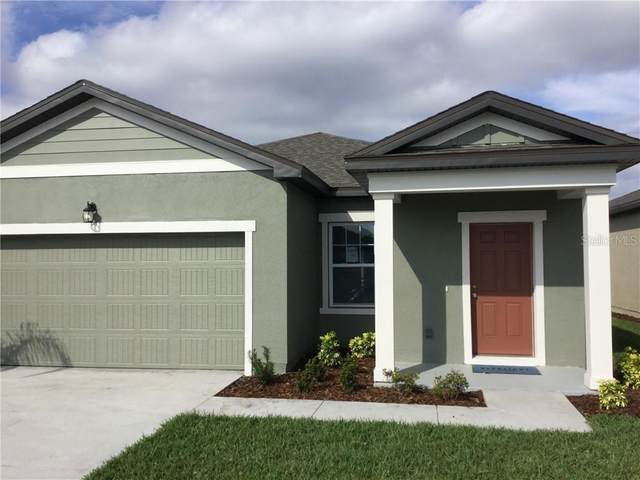 3023 Neverland Drive, New Smyrna Beach, FL 32168 (MLS #O5906120) :: Bridge Realty Group