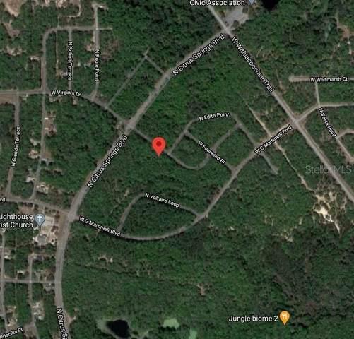 742 W Virginis Drive, Citrus Springs, FL 34434 (MLS #O5906274) :: Premier Home Experts