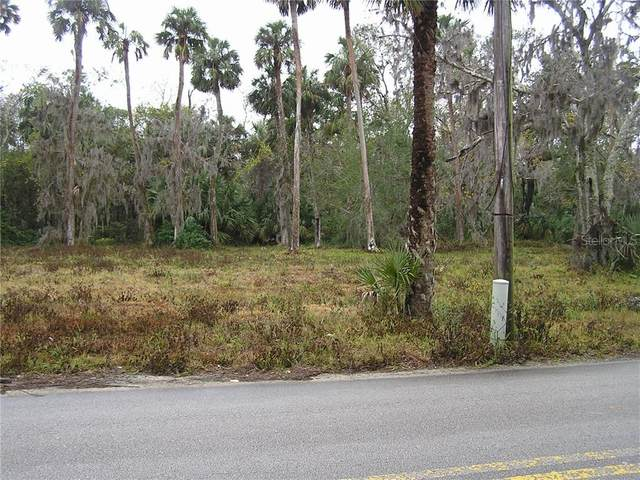S Myrtle Avenue, New Smyrna Beach, FL 32168 (MLS #O5906391) :: The Lersch Group