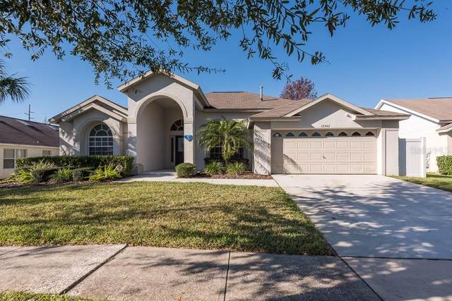 15742 Heron Hill Street, Clermont, FL 34714 (MLS #O5906487) :: Burwell Real Estate