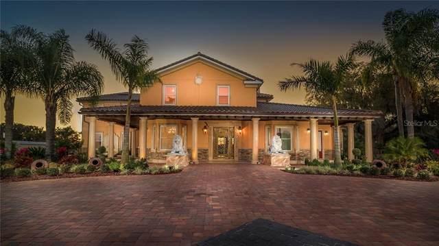 3140 Friars Cove Road, Saint Cloud, FL 34772 (MLS #O5906650) :: Griffin Group