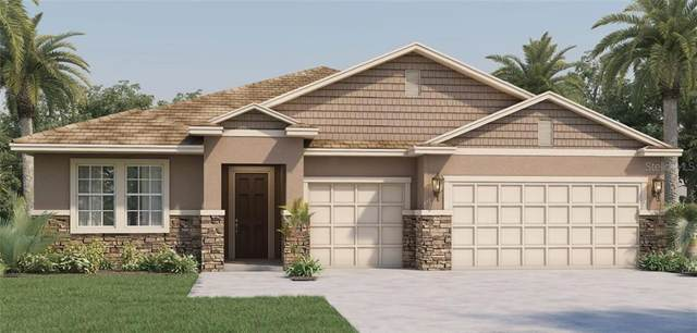444 Halter Drive, Apopka, FL 32712 (MLS #O5906709) :: Carmena and Associates Realty Group