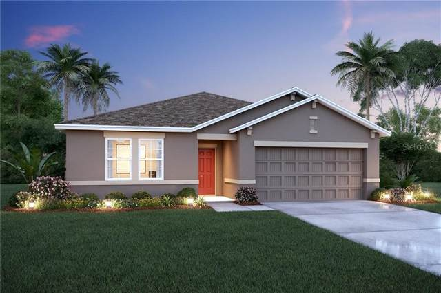 13608 Palmera Vista Drive #726, Riverview, FL 33579 (MLS #O5906933) :: Everlane Realty