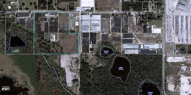 4212 Hogshead Road, Apopka, FL 32703 (MLS #O5906981) :: Expert Advisors Group