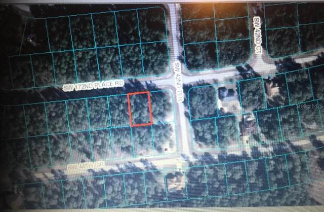 00 SW 172ND PLACE ROAD, Ocala, FL 34473 (MLS #O5907014) :: Carmena and Associates Realty Group
