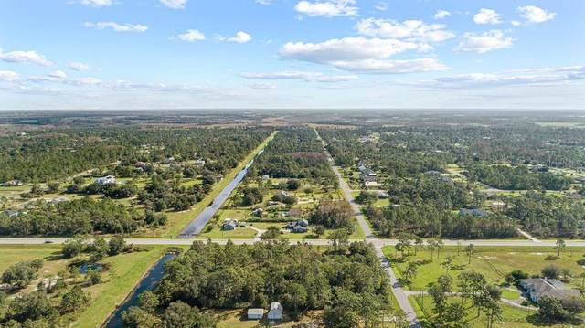 Quinella Street, Orlando, FL 32833 (MLS #O5907038) :: Premier Home Experts