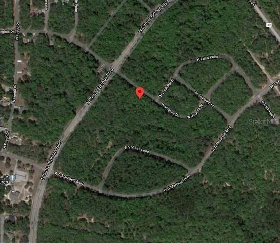 756 W Virginis Drive, Citrus Springs, FL 34434 (MLS #O5907076) :: Premier Home Experts