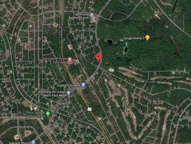 10512 N Citrus Springs Boulevard, Citrus Springs, FL 34434 (MLS #O5907083) :: Premier Home Experts