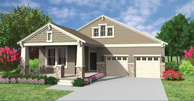 500 Nowell Loop, Deland, FL 32724 (MLS #O5907167) :: Bridge Realty Group